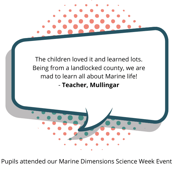 Pupils attended our Marine Dimensions Science Week event